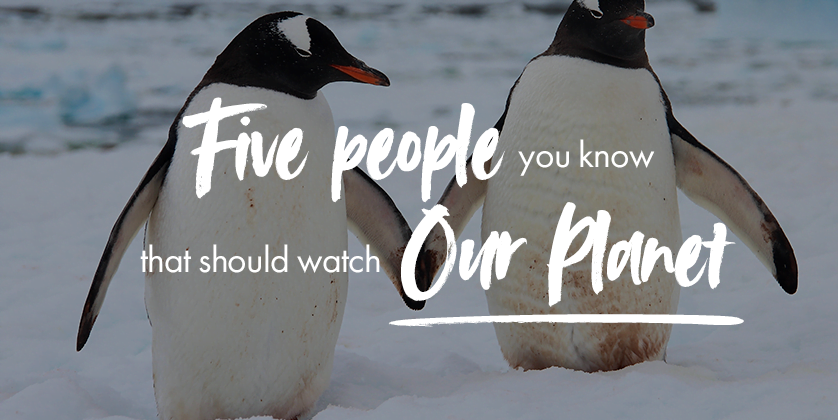 Five people in your life that should watch Our Planet